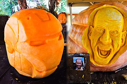 Giant pumpkin sculpting